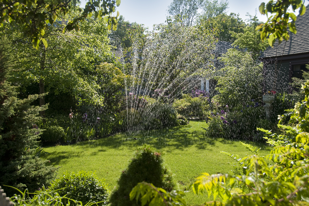 Lawn being watered with well water