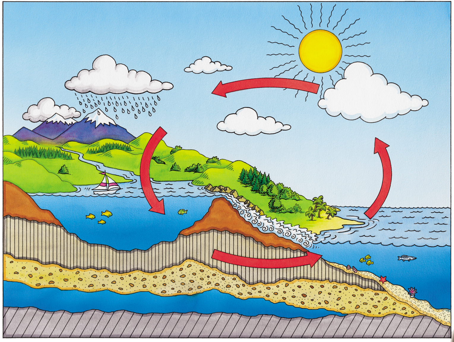 A cartoon of the water cycle.