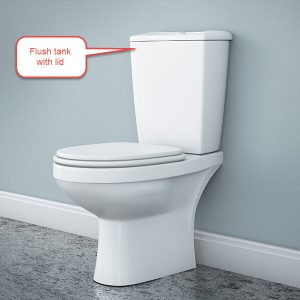 toilet flush tank, Top-10-problems, Toilet-Flush-Tank, water tests