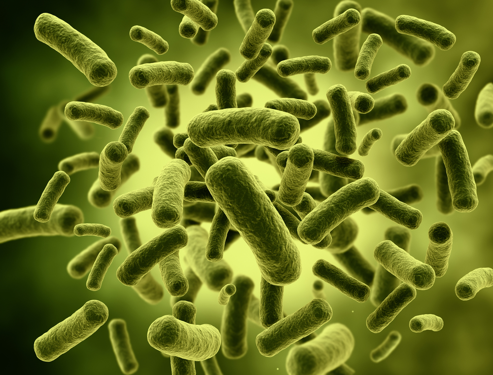 Sources of Coliform Bacteria Contamination in Home Well Water