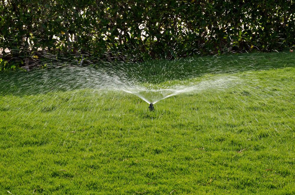 Cuts in Water Usage, Cuts in Utility Bill