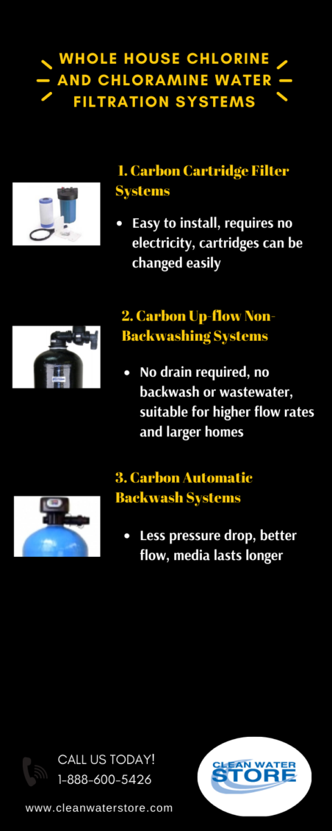 Chlorine and Chloramine Water Filtration Systems Infographic